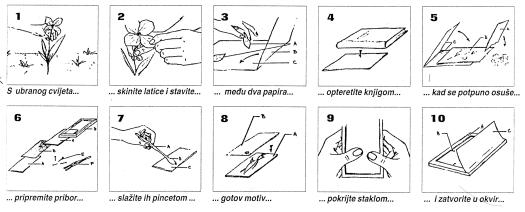 Ilustracija toMAgo postupka